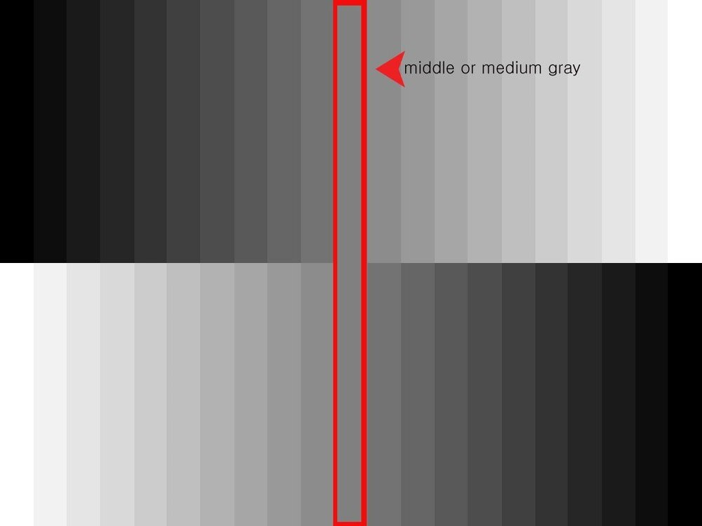How To Use Grey Cards And White Balancing For Accurate Color